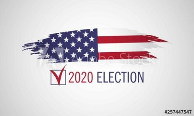 2020 Election Stock